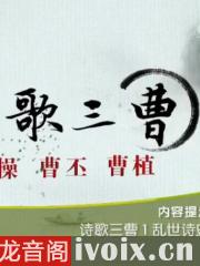诗歌三曹_百家讲坛有声小说打包下载