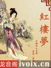红楼梦_朗读精编版_唐成播讲有声小说打包下载