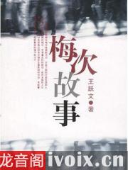 王跃文_梅次故事优发国际打包下载