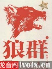 狼群有声小说打包下载