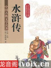 青少版水浒传_新课标有声小说打包下载